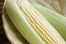 Sweetcorn In Basket Royalty Free Stock Image