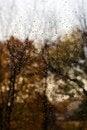 Free Autumn Melancholy Royalty Free Stock Photography - 15280227