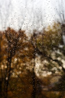 Free Autumn Melancholy Royalty Free Stock Photography - 15280227