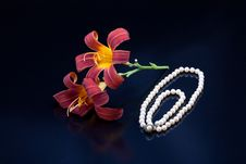 Free Lilies And A Pearl Necklace. Stock Photography - 15281202