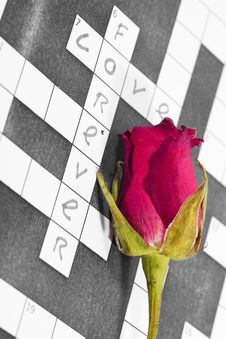 Free Dry Pink Red Rose On A Crossword Paper Royalty Free Stock Photography - 15284227