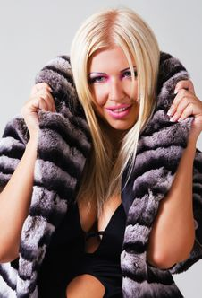 Free Fashionable Woman In A Striped Fur Coat Stock Photo - 15284950