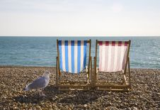 Free Seagul And Deckchairs, Brighton Royalty Free Stock Photos - 15287398