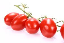 Free Bunch Of Tomatoes Stock Photo - 15287680