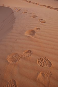 Free Morning Walk In The Sahara Stock Photo - 15289690