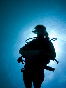 Free Silhouette Of A Diver Royalty Free Stock Photos - 15290148