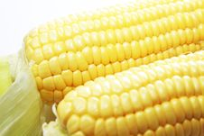 Free Two Corns Stock Photography - 15290262