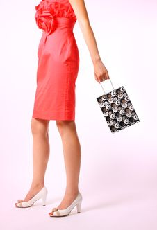 Woman With Shopping Bag Stock Image
