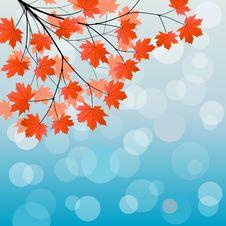 Free Autumn Background Stock Image - 15291561