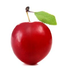 Cherry-plum Royalty Free Stock Photography