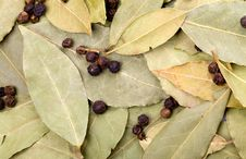 Free Bay Leaves And Black Peppercorns Stock Image - 15292601