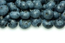 Free Blueberries Stock Photography - 15293222
