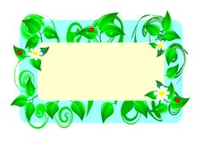 Floral Card. Vector Illustration. Stock Photography