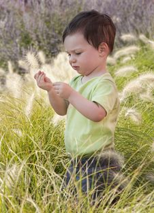 Free Child In A Garden Stock Photography - 15296132