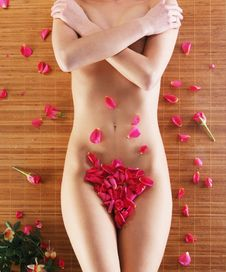 Spa Image With A Lovely Female Covered With Petals Royalty Free Stock Image