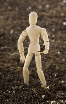 Free Mannequin Planting Seedling Standing In Soil Stock Image - 15298351
