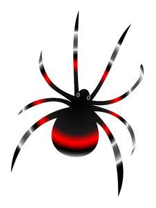 Free Black Widow Spider Stock Photo - 15299120