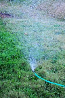Free Sprinkler Watering The Grass Yard Royalty Free Stock Image - 15299626