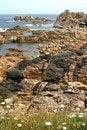 Free The Pink Granite Coast In Bretagne Stock Image - 1530731