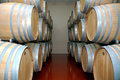 Free Wine Barrels 2 Stock Photo - 1532220