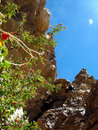 Free Trekker Royalty Free Stock Image - 1535146