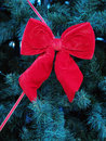 Free Christmas Decoration Royalty Free Stock Photography - 1537907