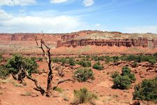 Free Capital Reef National Park Royalty Free Stock Images - 1533209