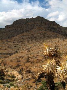 Free Mountain Stock Photo - 1533320