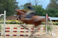 Free Show Jumping. Royalty Free Stock Photo - 1533705