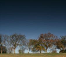 Free Watercolored Trees Stock Photo - 1535950