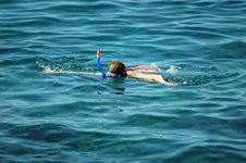 Free DIve In The Sea Royalty Free Stock Photo - 1538165