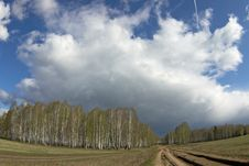 Spring Landscape With Birch Forest, Road, Field And  Clouds. Stock Image