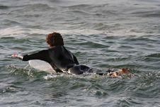 Free Surfer Stock Photos - 1539703