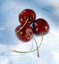 Free Three Cherries Royalty Free Stock Photo - 15301035