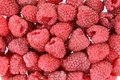 Free Raspberries Background Stock Images - 15302834