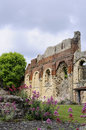 Free Old Ruins From Kent UK Royalty Free Stock Photography - 15302947