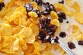 Free Healthy Cereal In Soya Milk Stock Photo - 15304370