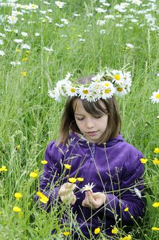 Free Beautiful Teenager Counting Petals In Grass Stock Photography - 15303342