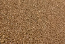 Grains Of Wheat Royalty Free Stock Images