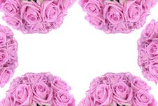 Free Bouquet Of Pink Roses Over White Stock Photos - 15305493