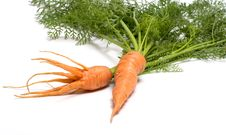 Free Carrots. Royalty Free Stock Images - 15306129
