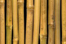 Free Bamboo  Stalks Stock Photos - 15307753