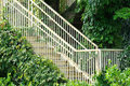 Free Stair And Access In Green Liane Surround Stock Photography - 15315462