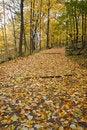 Free Autumn Trail Stock Image - 15316931