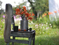 Free Still Life With Tiger Lilies On A Chair Royalty Free Stock Photos - 15317018