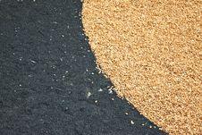 Yellow And Black Pebble Floor Stock Image