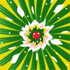 Free Flower Royalty Free Stock Image - 15310996