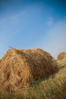 Free Hay Bales Stock Photos - 15311523