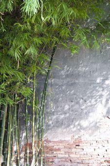 Free Brick Bamboo Background Stock Photo - 15312180
