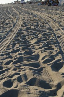 Tracks In Beach Stock Photography